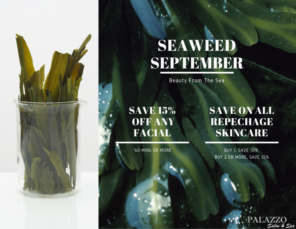 Seaweed September